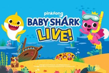 baby-shark2.jpg