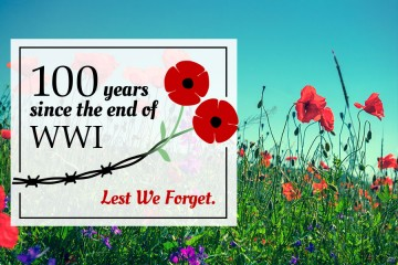 100-WWI_graphic_01.jpg