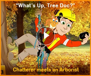 "WATCH: Chatterer meets Arborist ""What's Up, Tree Doc?"""