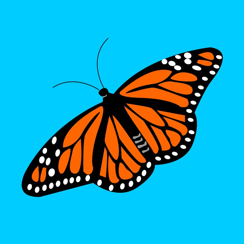 char_betsy-butterfly.jpg