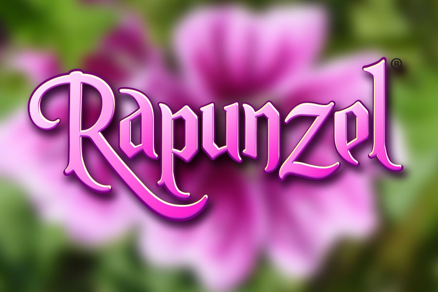 rapunzel_Production_900x600.jpg