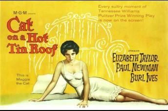 movie_Cat_on_a_Hot_Tin_Roof.jpg