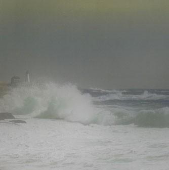 lyall_seascape.jpg