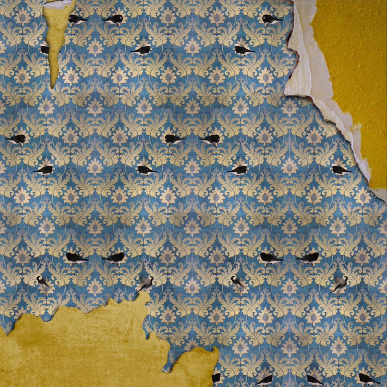 Bird Wallpaper torn_lr.jpg