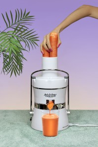 Buecking_Juicer_30x20 copy.jpg