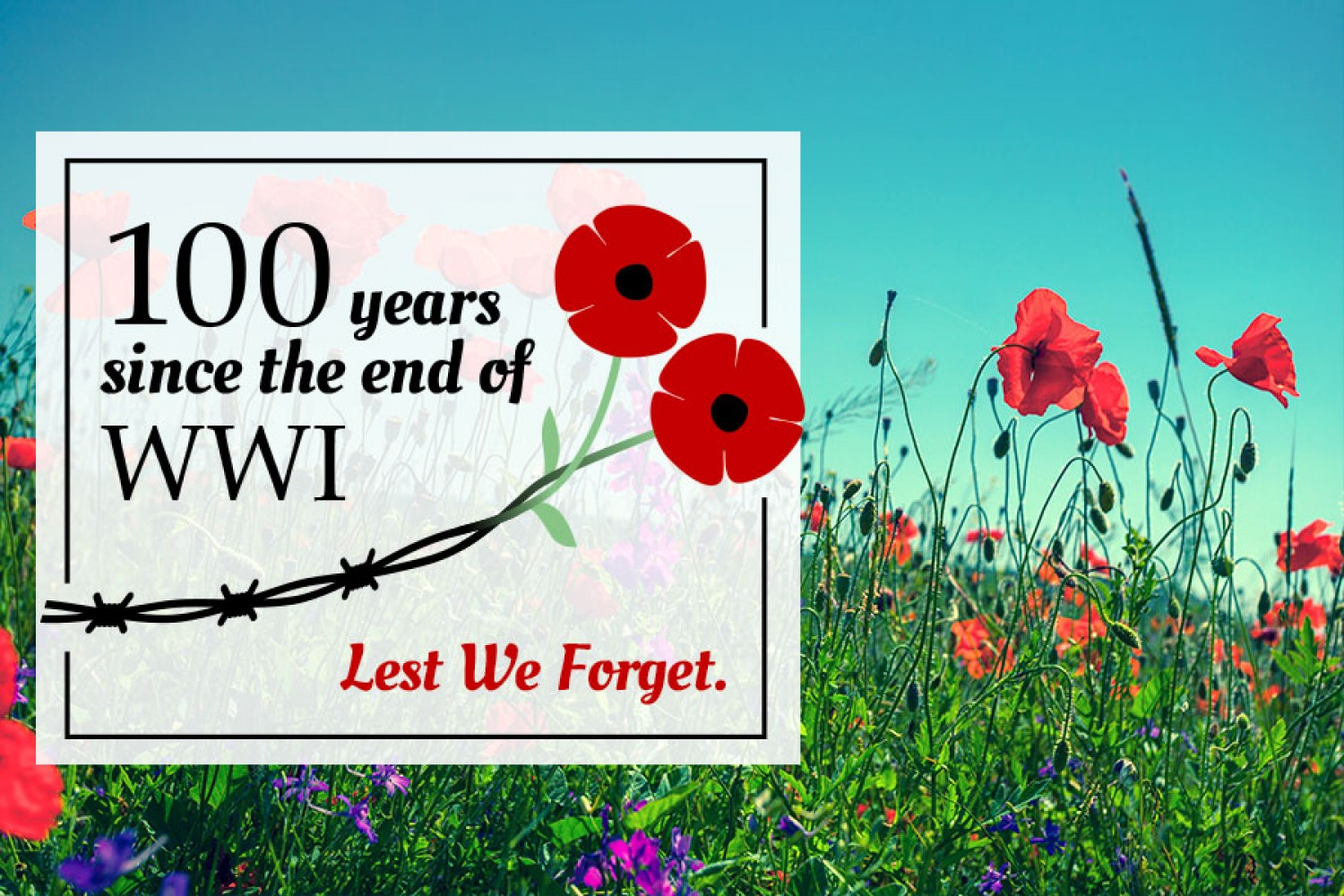 """November 11 marks 100 years since the end of World War I, Nov. 11th, 1918.  The War Ended with at """"eleventh hour of the eleventh day of the eleventh  month""""."""